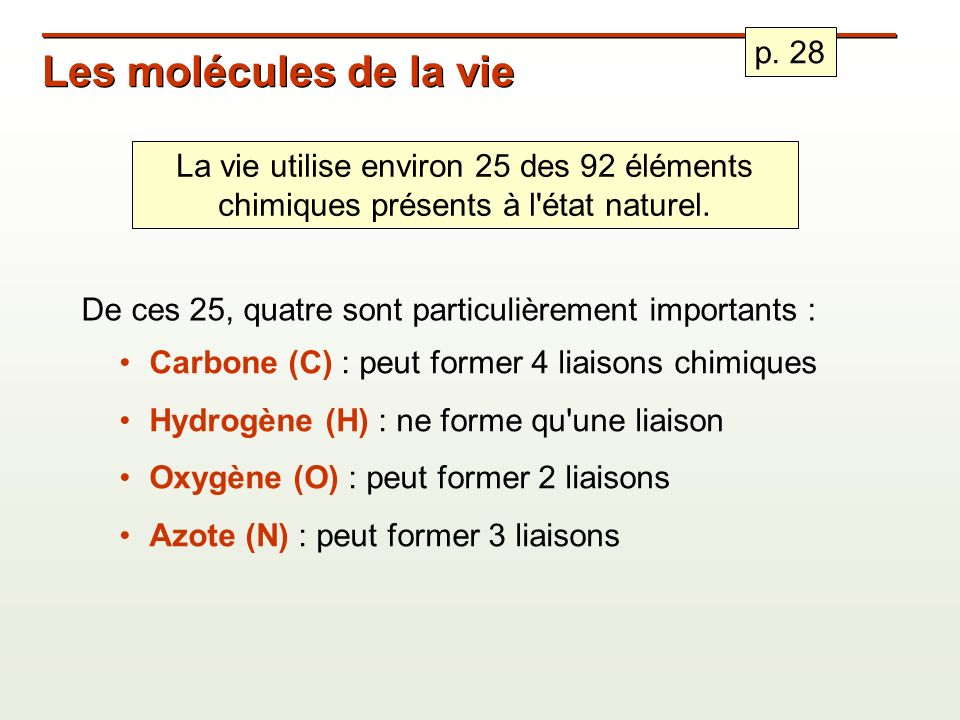 Les molécules de la vie p. 28
