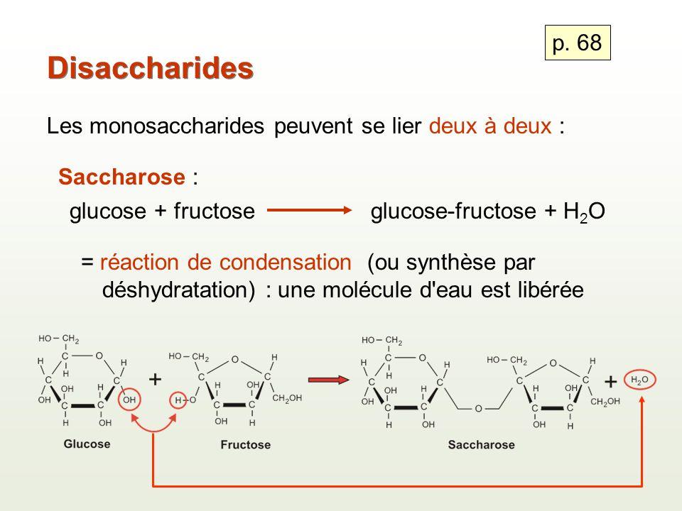 Disaccharides p. 68 Les monosaccharides peuvent se lier deux à deux :