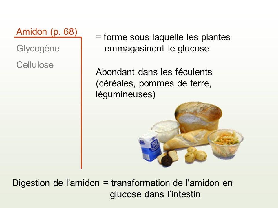Amidon (p. 68) Glycogène. Cellulose. = forme sous laquelle les plantes emmagasinent le glucose.