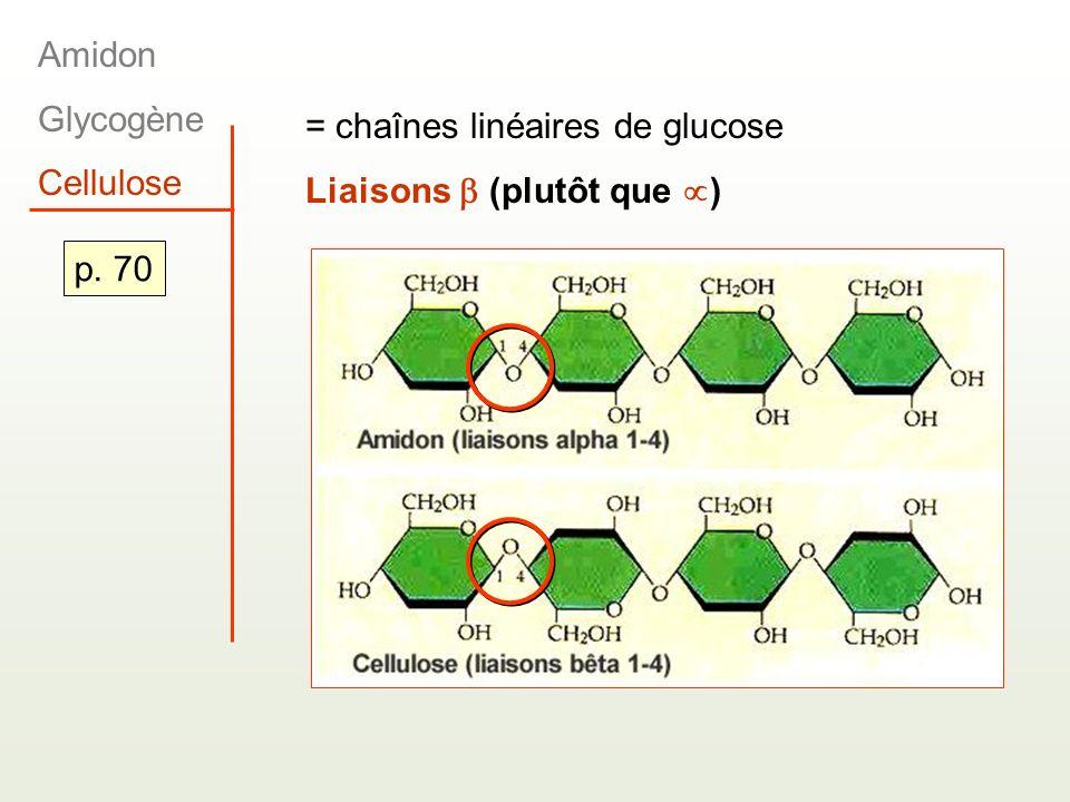 Amidon Glycogène Cellulose = chaînes linéaires de glucose Liaisons  (plutôt que ) p. 70