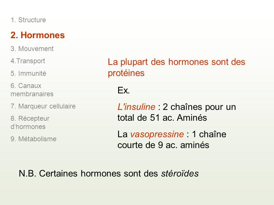 La plupart des hormones sont des protéines