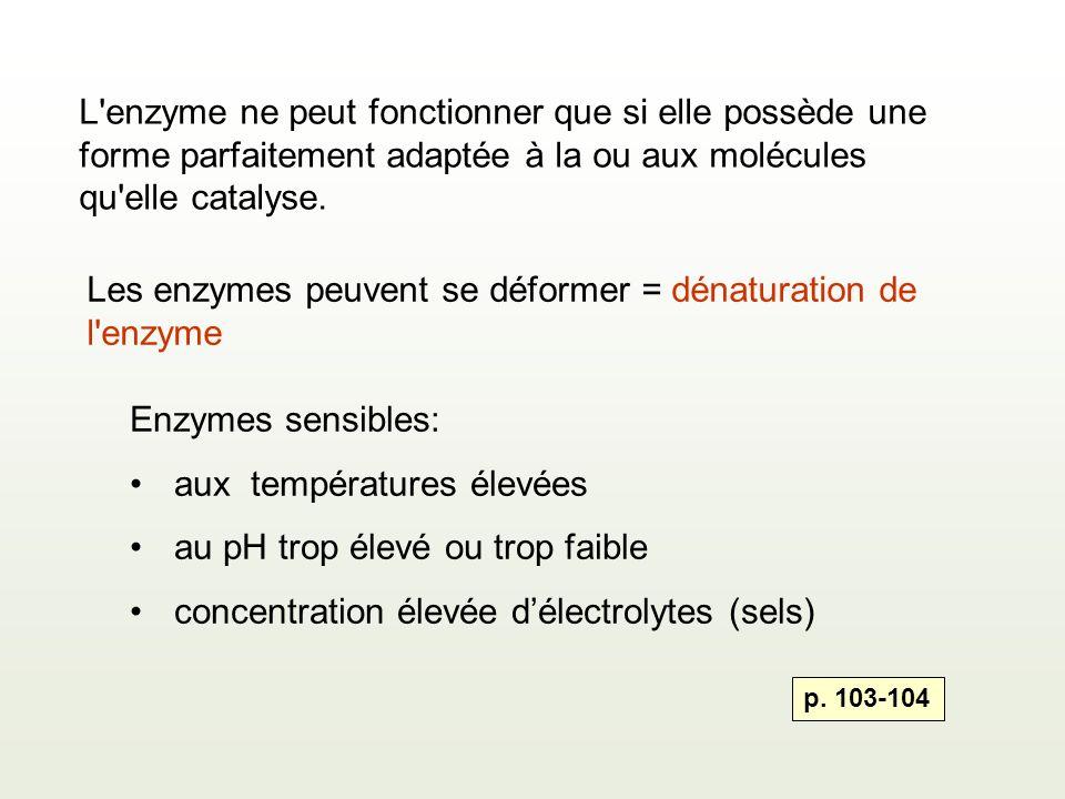 Les enzymes peuvent se déformer = dénaturation de l enzyme