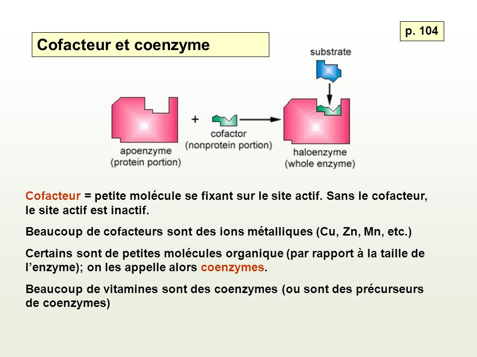 Cofacteur et coenzyme p. 104
