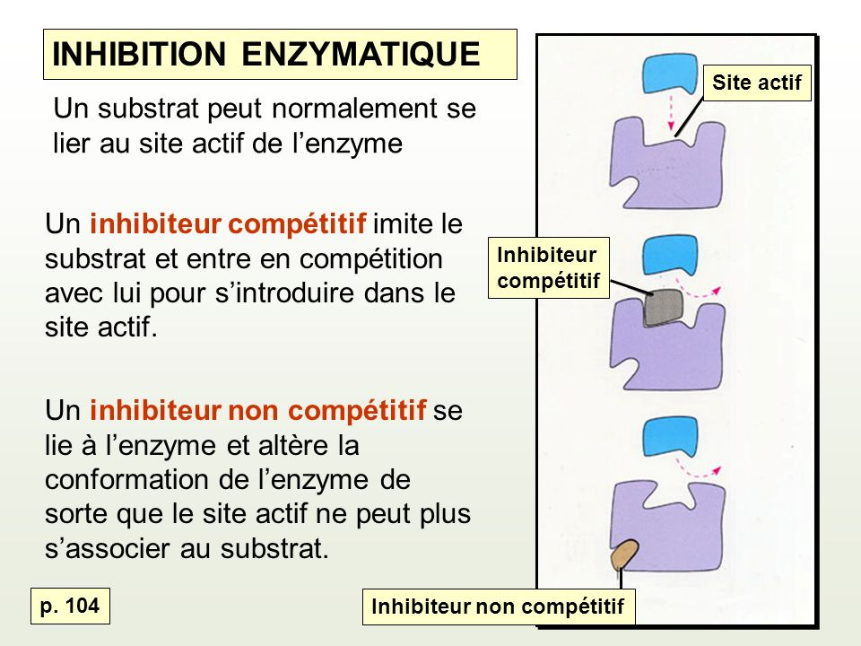INHIBITION ENZYMATIQUE