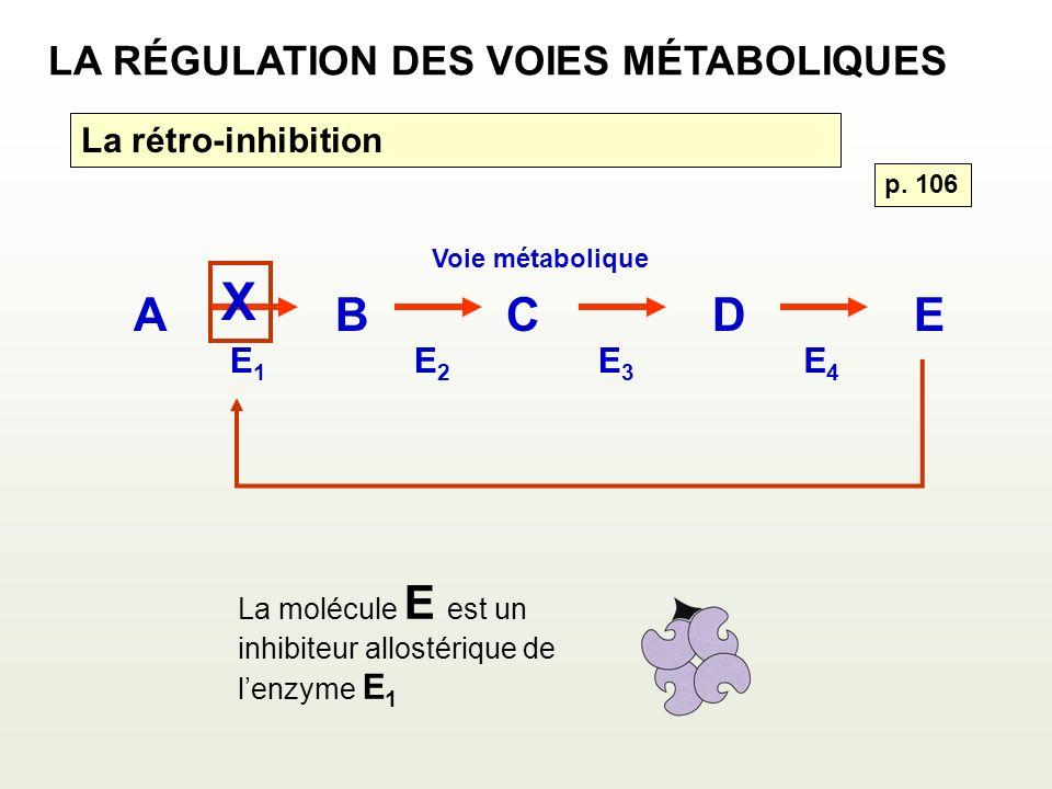 X A B C D E LA RÉGULATION DES VOIES MÉTABOLIQUES La rétro-inhibition