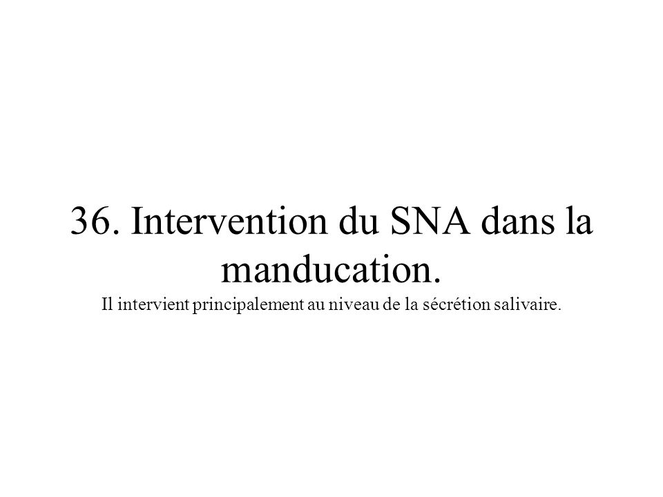 36. Intervention du SNA dans la manducation