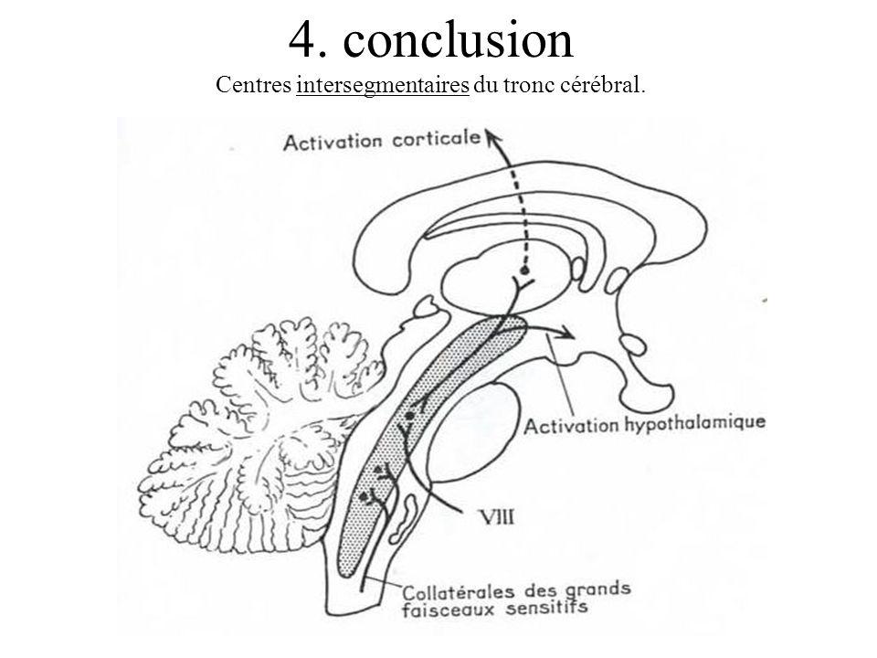 Centres intersegmentaires du tronc cérébral.
