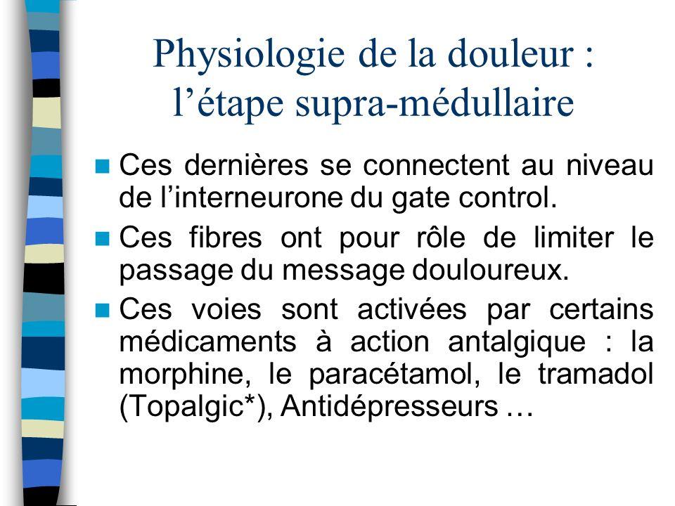 Physiologie de la douleur : l'étape supra-médullaire