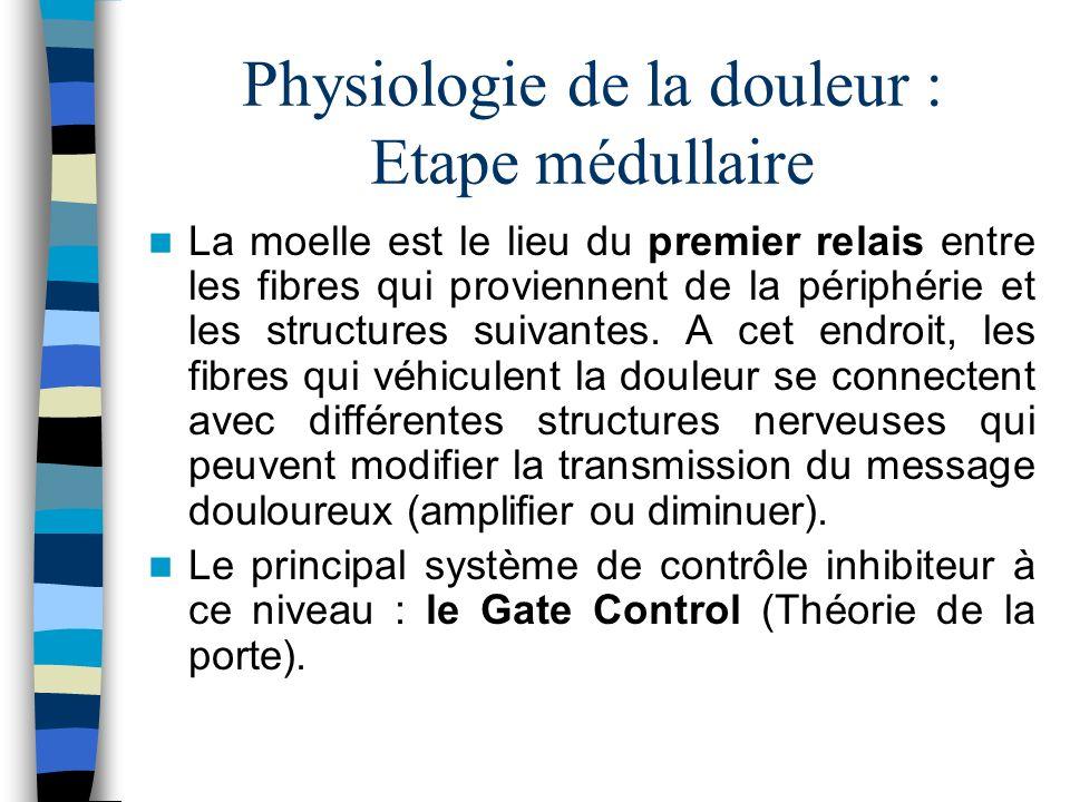 Physiologie de la douleur : Etape médullaire