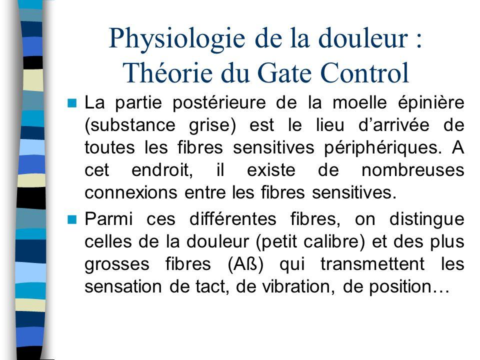 Physiologie de la douleur : Théorie du Gate Control