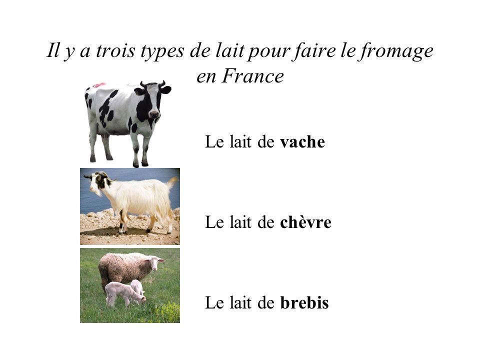 Il y a trois types de lait pour faire le fromage en France