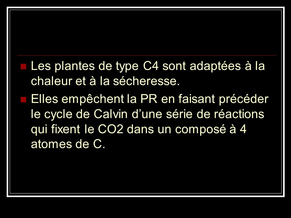 Les plantes de type C4 sont adaptées à la chaleur et à la sécheresse.