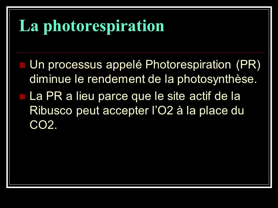 La photorespiration Un processus appelé Photorespiration (PR) diminue le rendement de la photosynthèse.