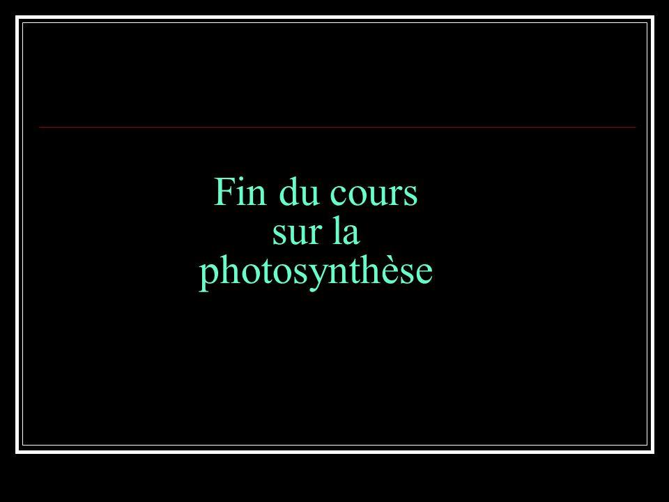 Fin du cours sur la photosynthèse