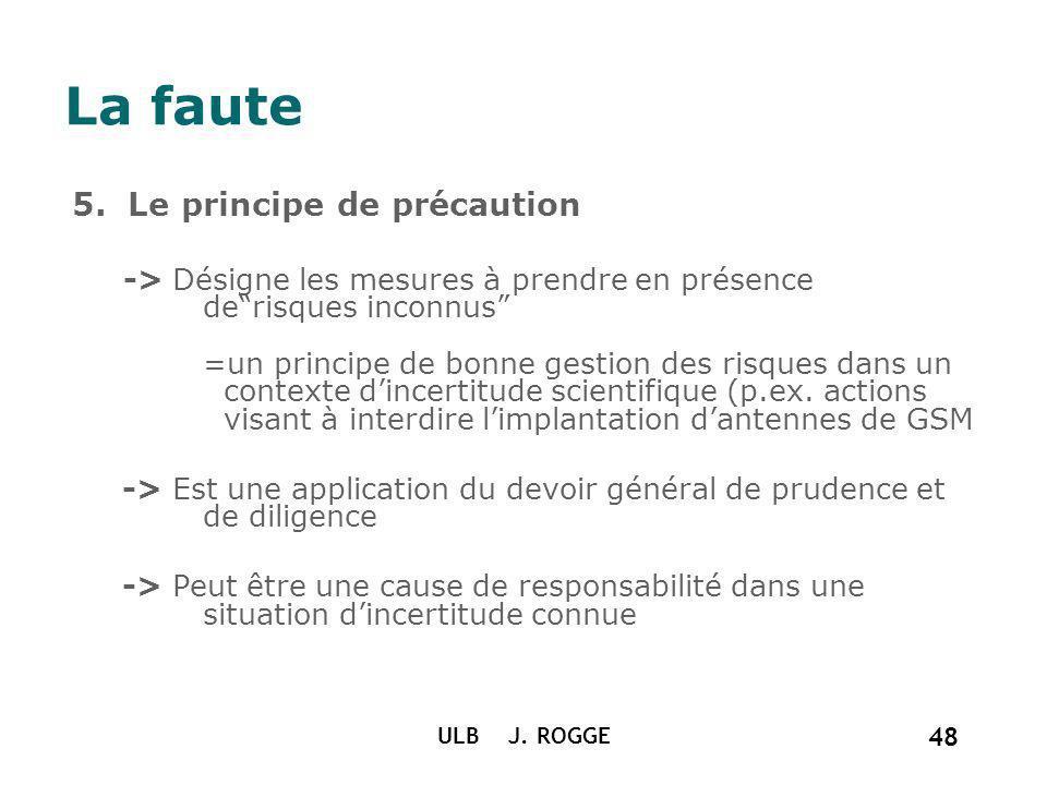 La faute 5. Le principe de précaution