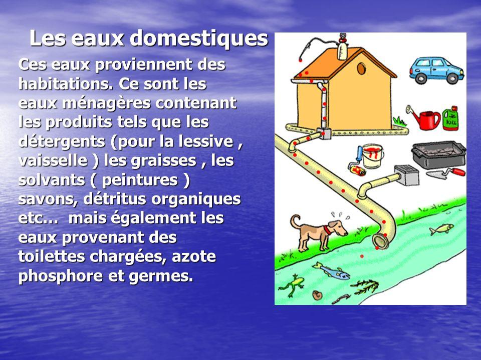 Les eaux domestiques Ces eaux proviennent des habitations. Ce sont les