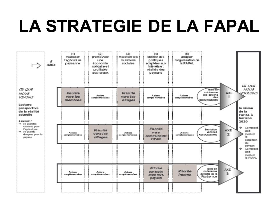 LA STRATEGIE DE LA FAPAL