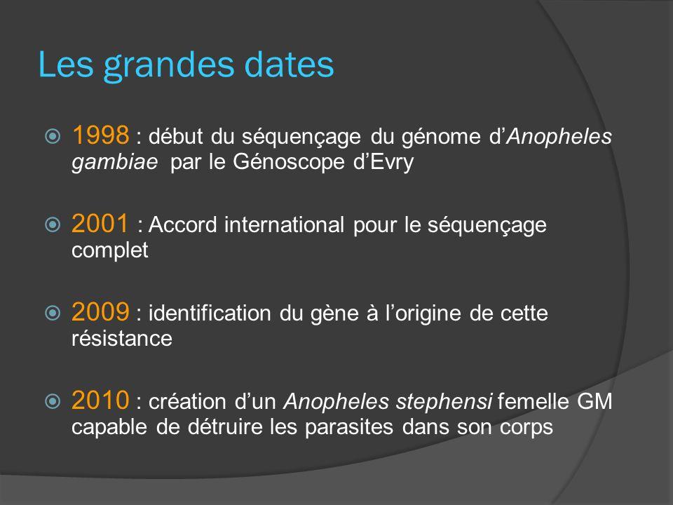 Les grandes dates 1998 : début du séquençage du génome d'Anopheles gambiae par le Génoscope d'Evry.