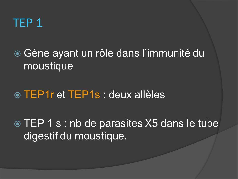 TEP 1 Gène ayant un rôle dans l'immunité du moustique