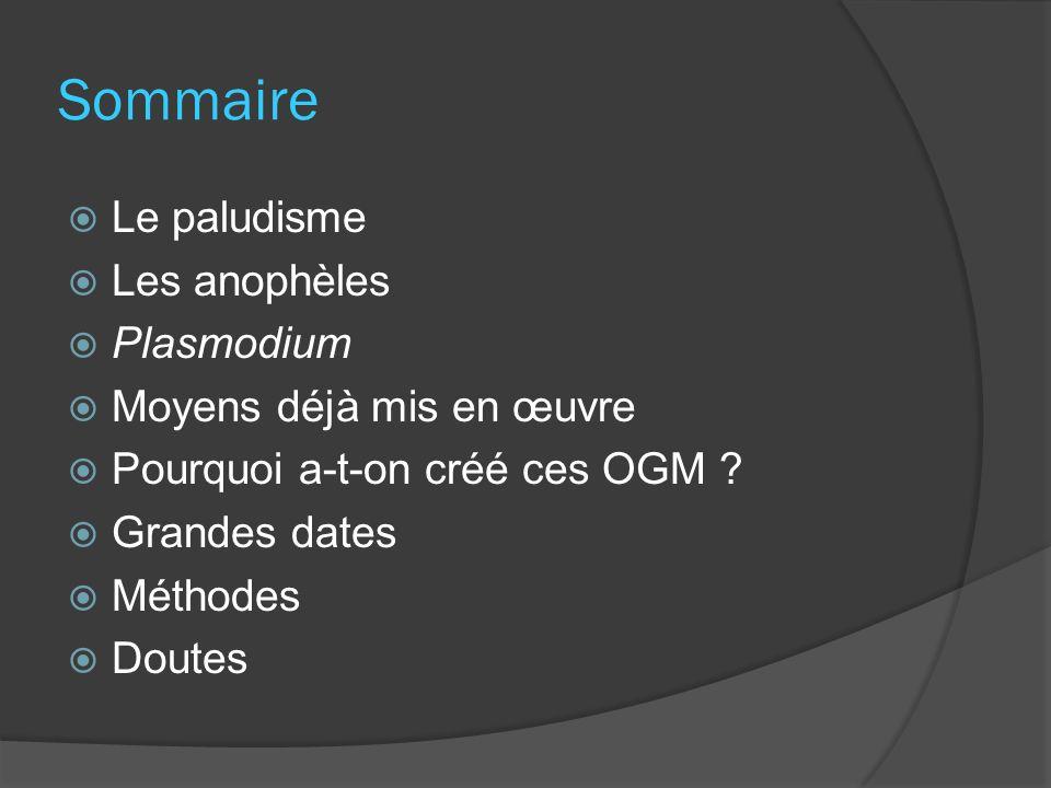 Sommaire Le paludisme Les anophèles Plasmodium