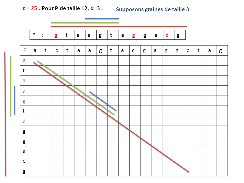 Supposons graines de taille 3