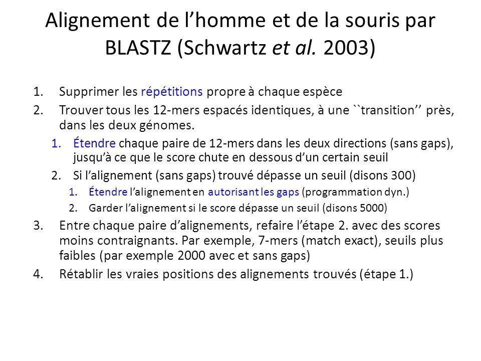 Alignement de l'homme et de la souris par BLASTZ (Schwartz et al. 2003)