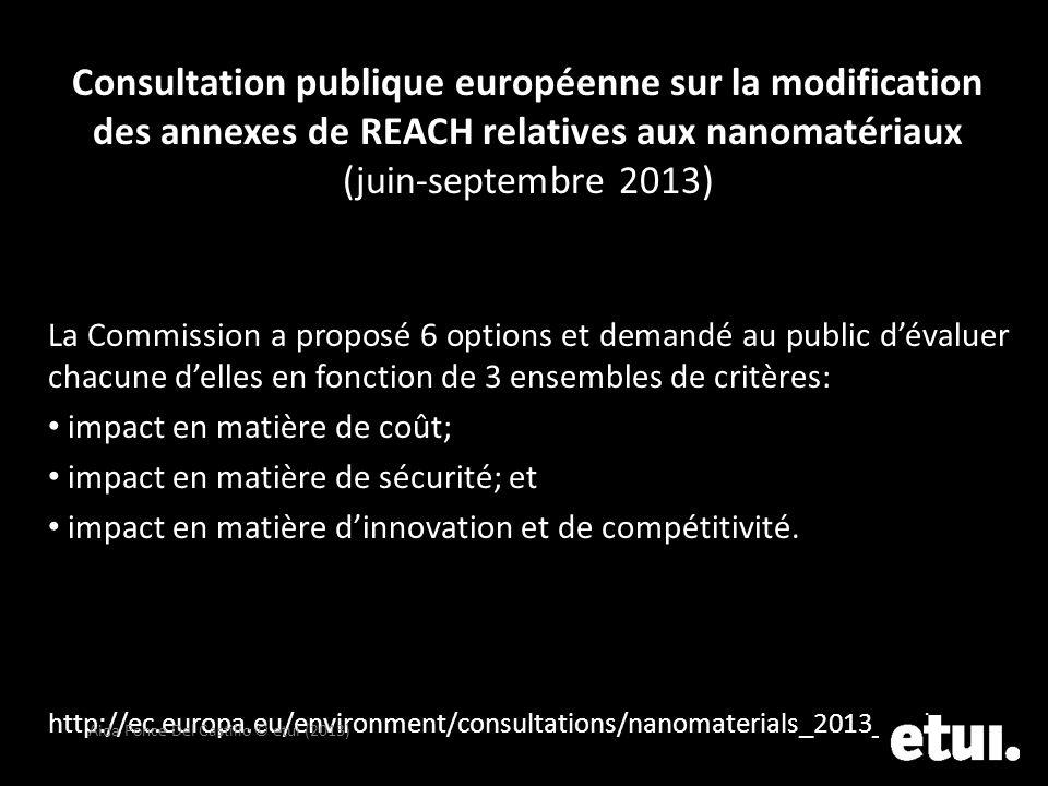 Consultation publique européenne sur la modification des annexes de REACH relatives aux nanomatériaux (juin-septembre 2013)