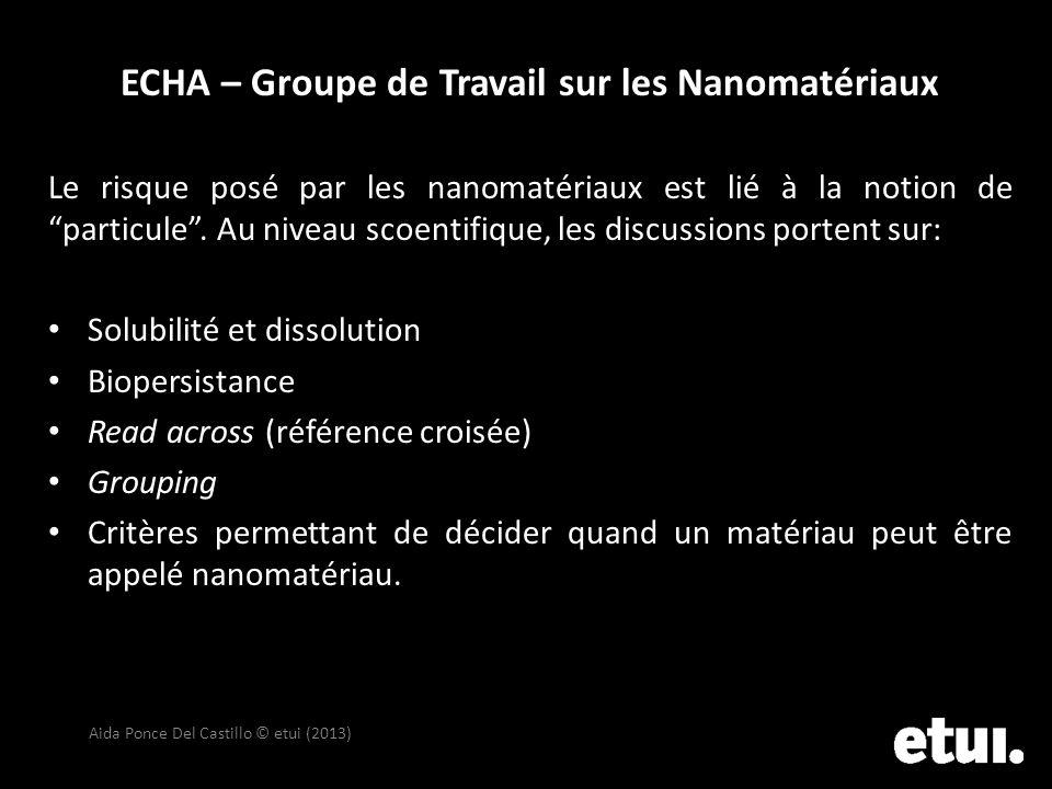 ECHA – Groupe de Travail sur les Nanomatériaux