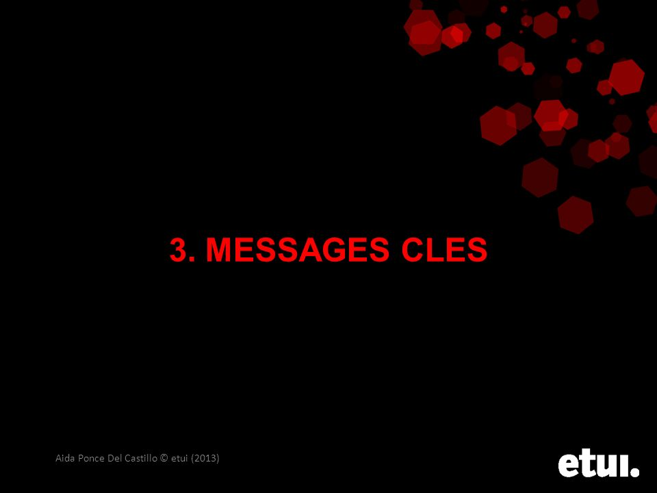3. MESSAGES CLES Aida Ponce Del Castillo © etui (2013)
