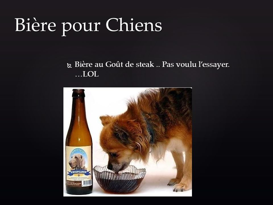 Bière pour Chiens Bière au Goût de steak .. Pas voulu l'essayer. …LOL