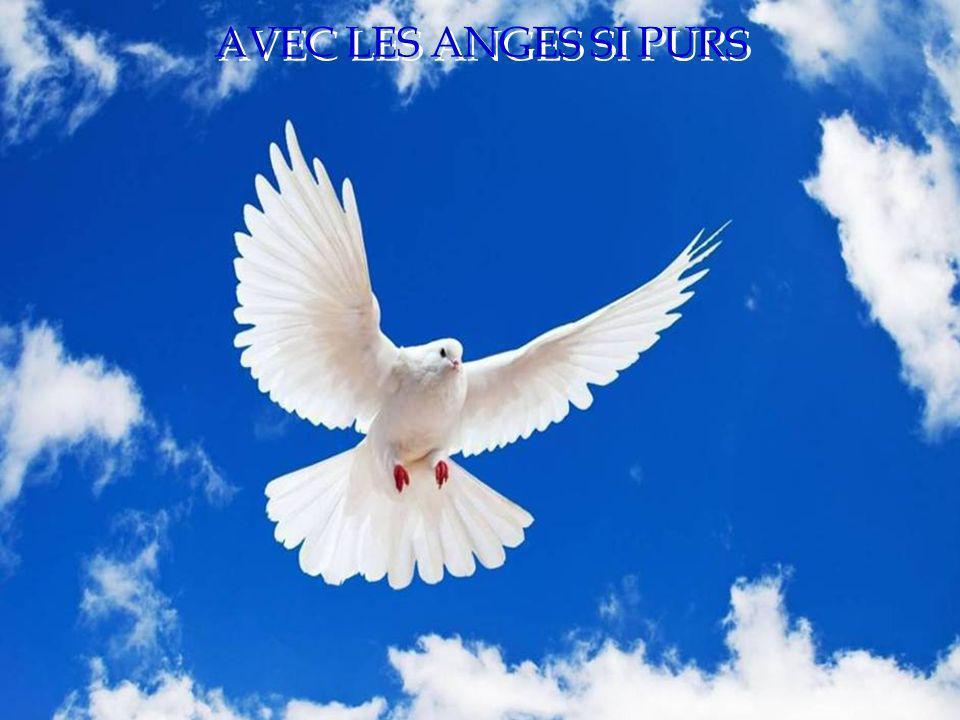 AVEC LES ANGES SI PURS