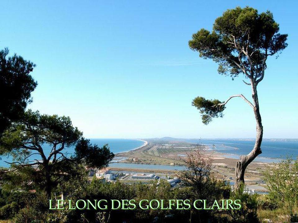 LE LONG DES GOLFES CLAIRS