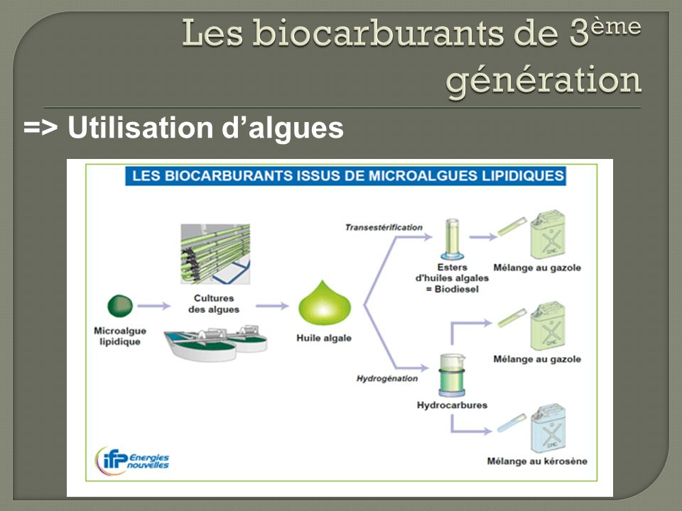 Les biocarburants de 3ème génération