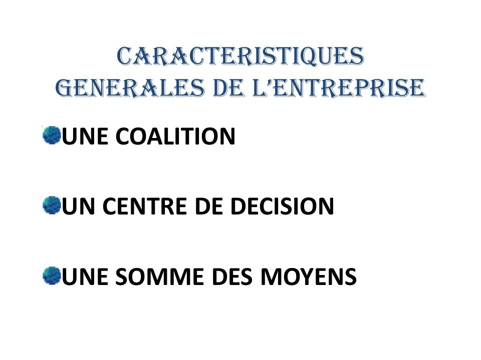 CARACTERISTIQUES GENERALES DE L'ENTREPRISE