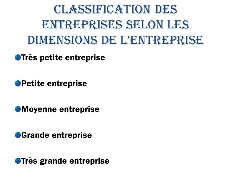 CLASSIFICATION DES ENTREPRISES SELON LES DIMENSIONS DE L'ENTREPRISE