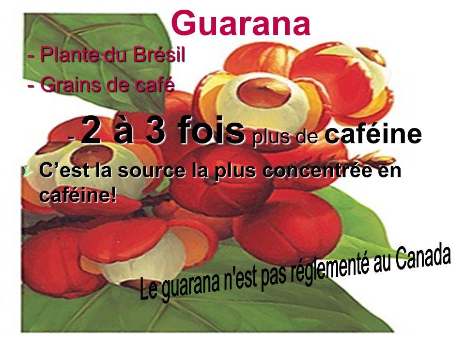 Le guarana n est pas réglementé au Canada