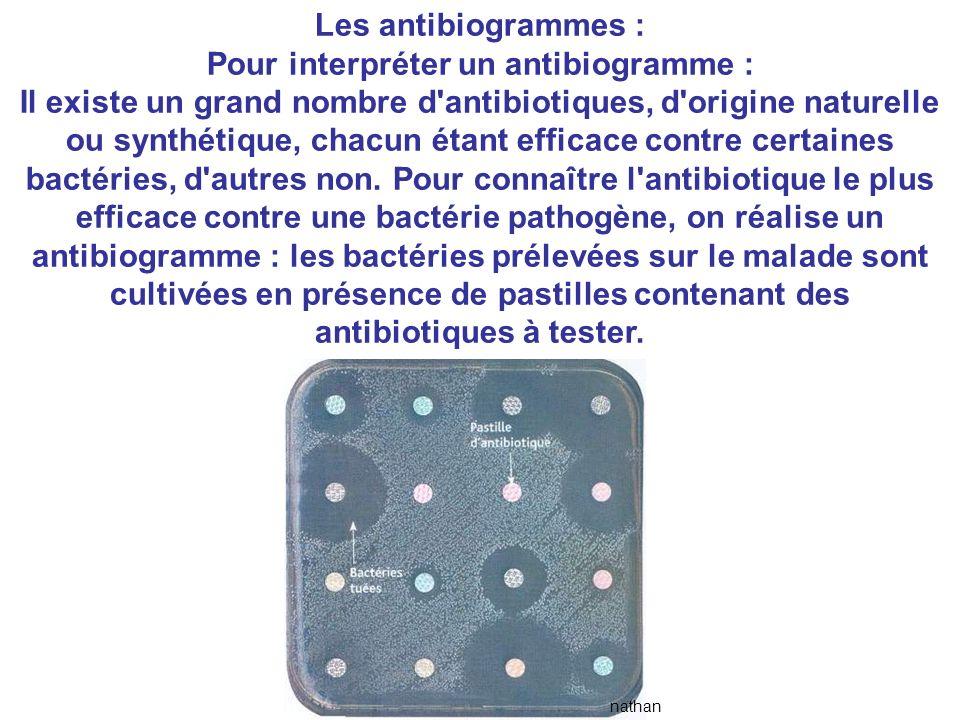 Pour interpréter un antibiogramme :
