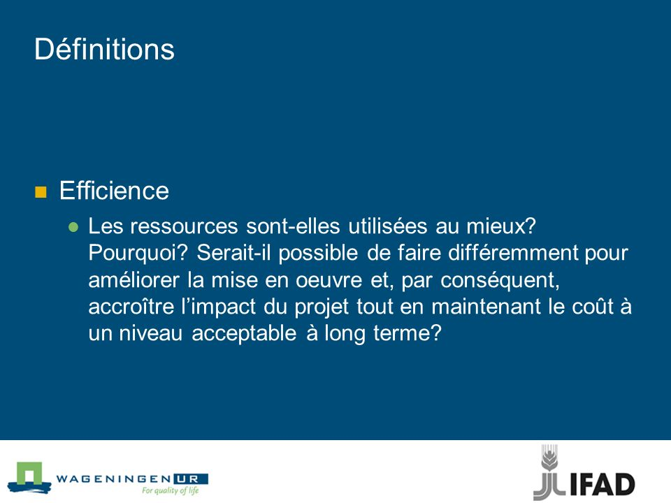 Définitions Efficience