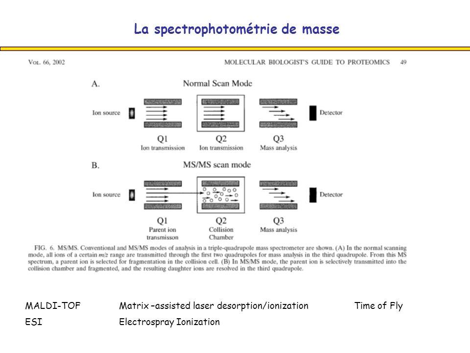 La spectrophotométrie de masse