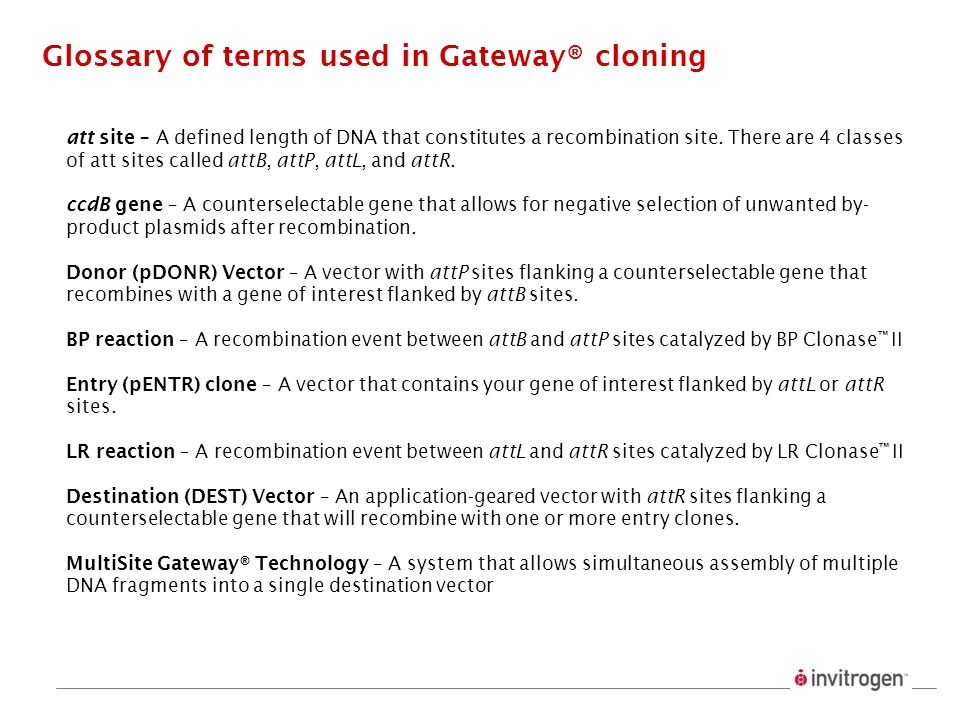 Glossary of terms used in Gateway® cloning