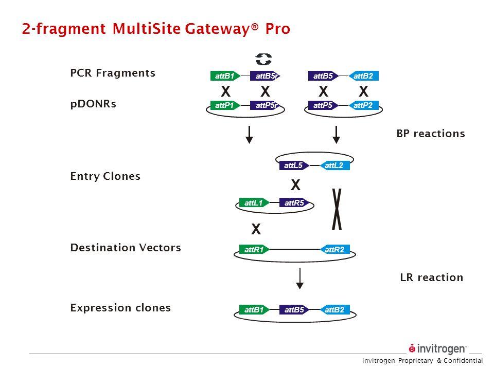 2-fragment MultiSite Gateway® Pro