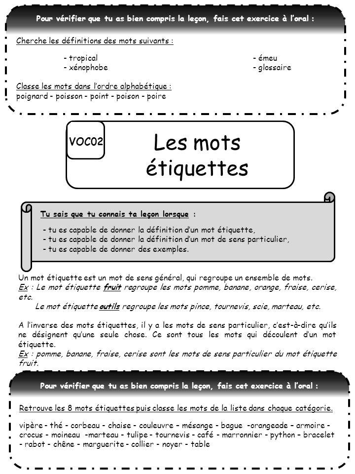 Les mots étiquettes VOC02