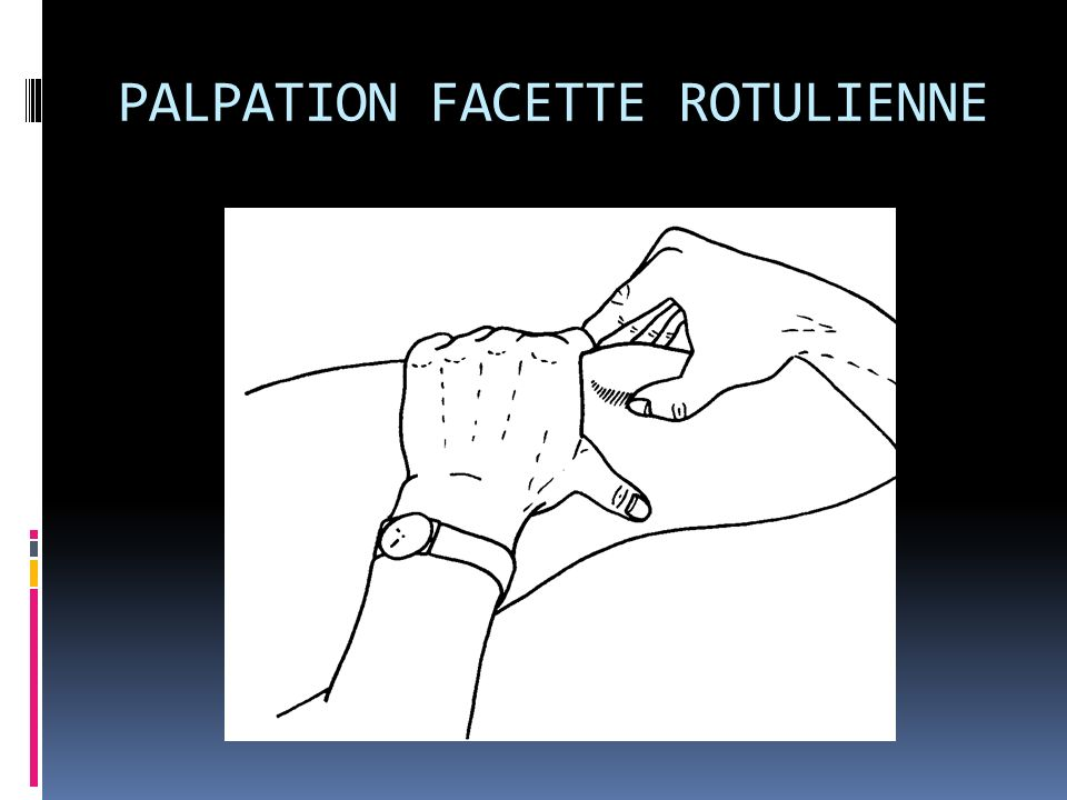 PALPATION FACETTE ROTULIENNE