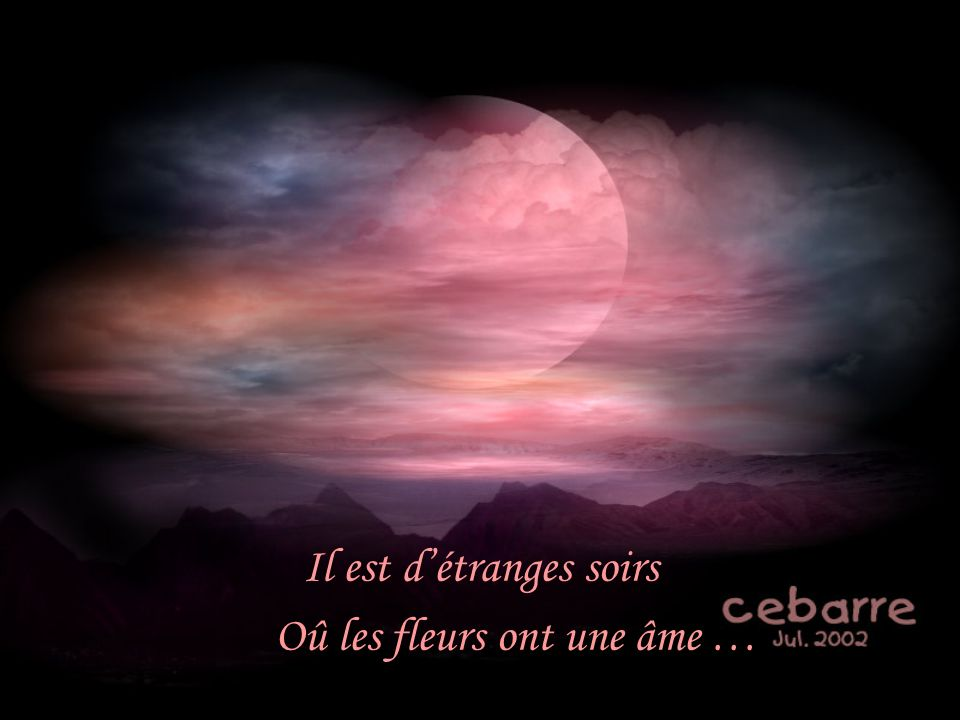 Il est d'étranges soirs Oû les fleurs ont une âme …