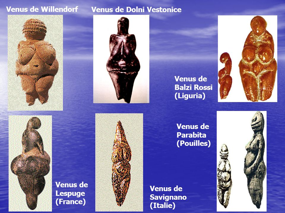 Venus de Willendorf Venus de Dolni Vestonice. Venus de Balzi Rossi (Liguria) Venus de Parabita (Pouilles)