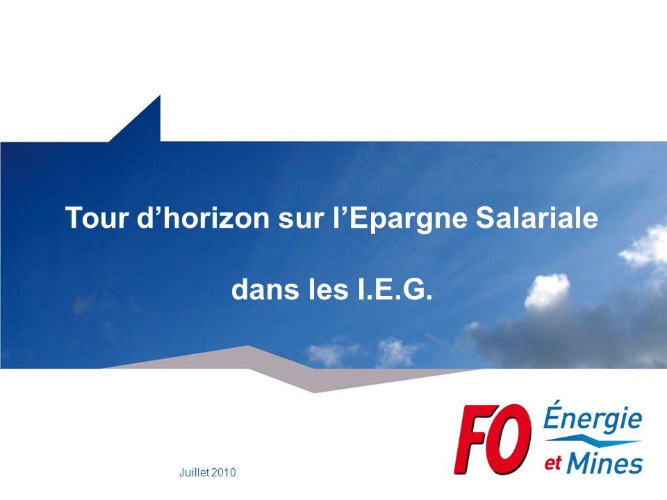 Tour d'horizon sur l'Epargne Salariale dans les I.E.G.