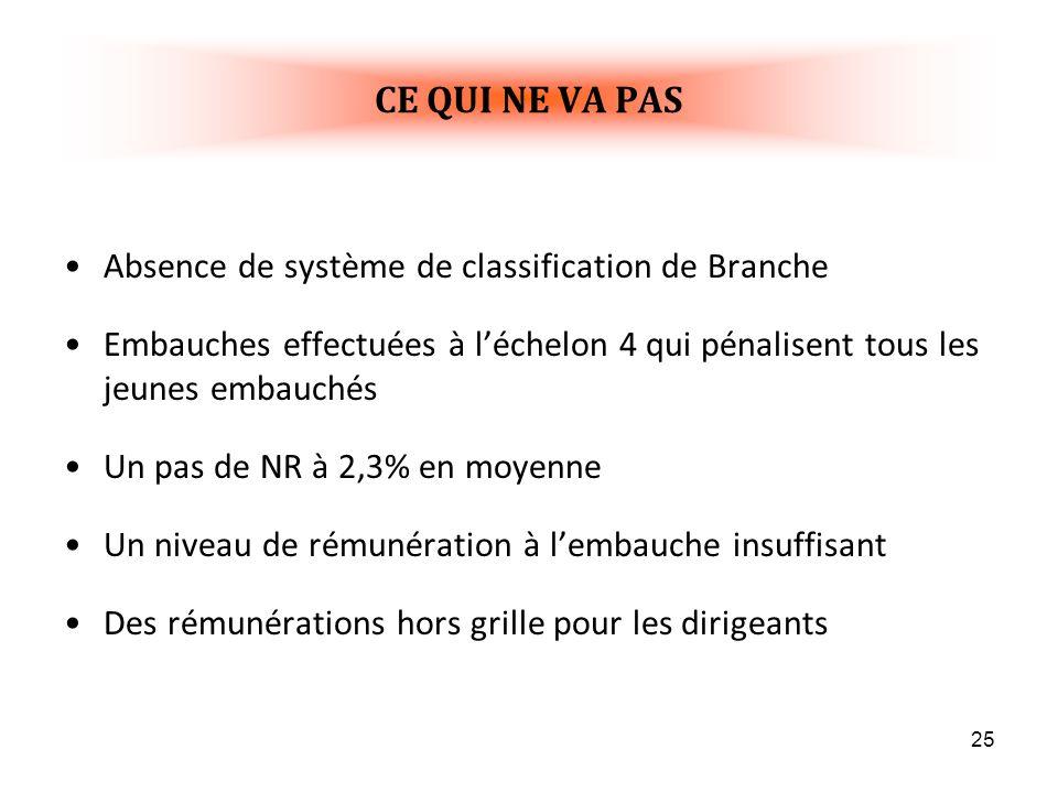 CE QUI NE VA PAS Absence de système de classification de Branche