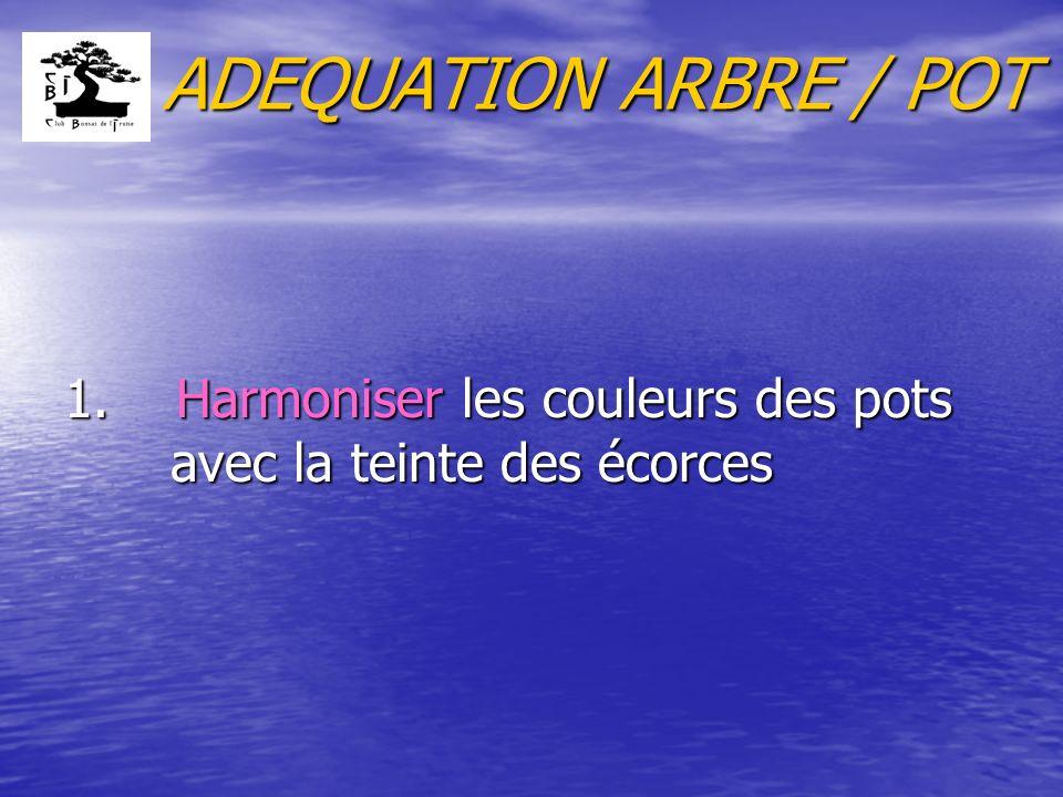 ADEQUATION ARBRE / POT 1. Harmoniser les couleurs des pots avec la teinte des écorces