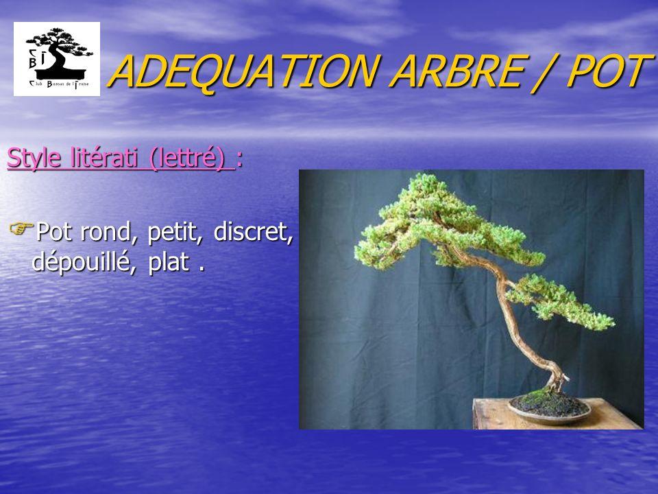 ADEQUATION ARBRE / POT Style litérati (lettré) :