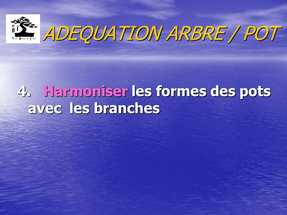 ADEQUATION ARBRE / POT 4. Harmoniser les formes des pots avec les branches